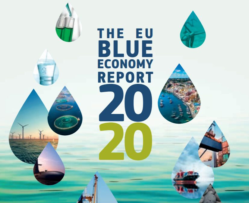 Logo of EU Blue Economy Report 2020